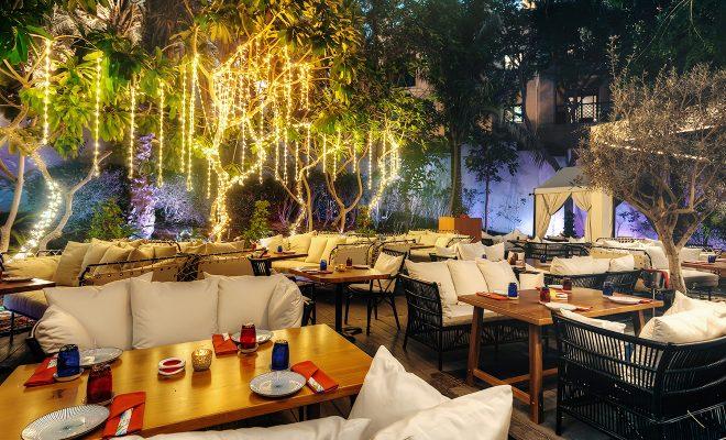 Toko Ladies Night Dubai